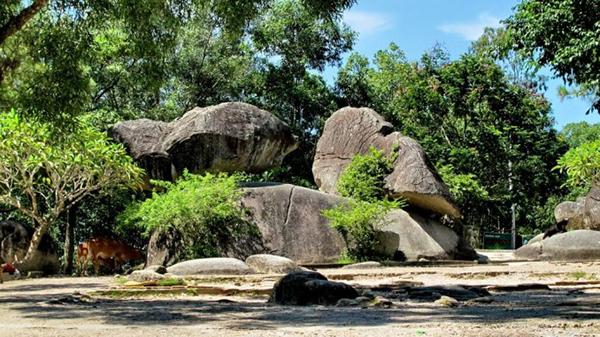 Hòn trống mái tại Sầm Sơn