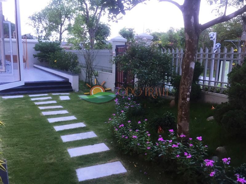 Khuôn viên sân vườn xanh mát, đẹp mắt